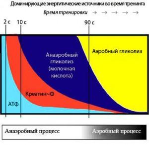 системы АТФ